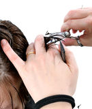 Cutting hair woman. Royalty Free Stock Photos