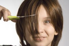 Cutting hairs Stock Image