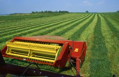 Cutting hay field. Expansive green field being cut for hay, view from tractor Stock Images