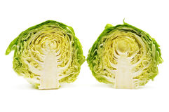 Cutting head cabbage Royalty Free Stock Photo