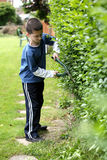 Cutting the hedge Royalty Free Stock Images