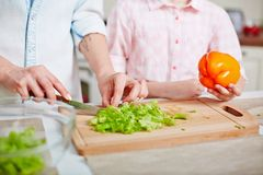 Cutting ingredients for salad Stock Image