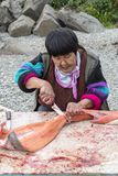 Cutting of just catched salmon on the bank of Anadyr firth, Chukotka Stock Images
