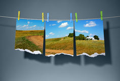Cutting a landscape photos on clothespins Stock Photography