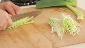 Cutting leek stock footage