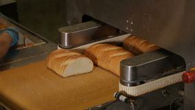 Cutting a loaf of bread into pieces and packing stock video footage