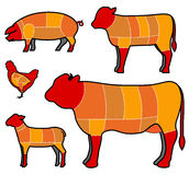 Cutting meat. Butcher's diagram for cutting meat Royalty Free Stock Photography