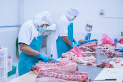 Cutting meat slaughterhouse workers in the factory. Cutting meat slaughterhouse workers in the refrigerator stock photo