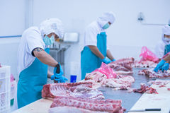 Cutting meat slaughterhouse workers in the factory. Cutting meat slaughterhouse workers in the refrigerator Stock Photos