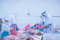 Cutting meat slaughterhouse workers in the factory. Cutting meat slaughterhouse workers in the refrigerator Royalty Free Stock Image