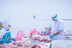 Cutting meat slaughterhouse workers in the factory. Cutting meat slaughterhouse workers in the refrigerator Royalty Free Stock Images