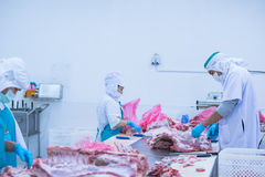 Cutting meat slaughterhouse workers in the factory. Cutting meat slaughterhouse workers in the refrigerator Royalty Free Stock Photos