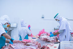 Cutting meat slaughterhouse workers in the factory. Cutting meat slaughterhouse workers in the refrigerator Royalty Free Stock Photography
