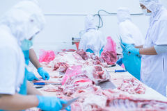 Cutting meat slaughterhouse workers in the factory. Cutting meat slaughterhouse workers in the refrigerator Royalty Free Stock Photo