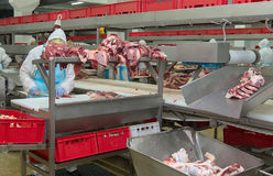 Cutting meat slaughterhouse workers in a meat factory. Cutting meat slaughterhouse workers in a meat factory royalty free stock photos