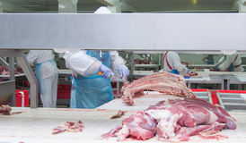 Cutting meat slaughterhouse workers in a meat factory. Cutting meat slaughterhouse workers in a meat factory royalty free stock photo