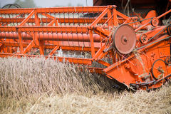 Cutting mechanism in red harvester Stock Photography