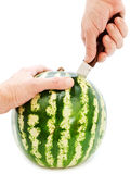 Cutting melon Royalty Free Stock Image