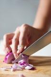 Cutting onion Stock Image