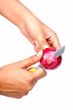 Cutting onion Royalty Free Stock Photo