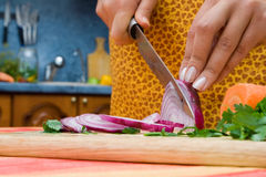 Cutting onion Stock Photography