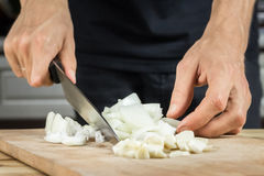 Cutting onion and garlic Royalty Free Stock Photography
