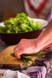 Cutting onion for salad royalty free stock images