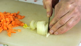Cutting the onion stock footage