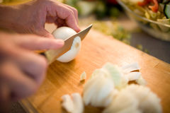 Cutting the onions. On a wooden board with many vegetables in background Stock Image