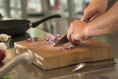 Cutting the onions Stock Photography