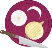 Cutting Onions Stock Photo