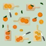 Cutting oranges and tangerines. Vector illustration Stock Photography
