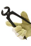 Cutting Pliers Stock Image