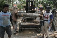 Cutting Process Machine Woodworking Stock Photo