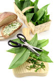 Cutting ramson leaves with herbal scissors. in background bread. With ramson butter. and fresh ramson in basket Royalty Free Stock Photos