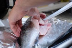 Cutting raw fish. Dinner will be served soon Royalty Free Stock Photos