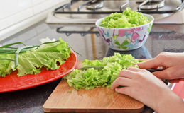 Cutting salad Royalty Free Stock Photos