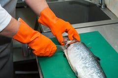 cutting salmon fish Stock Photos