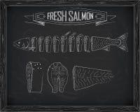 Cutting scheme fresh salmon Stock Photography