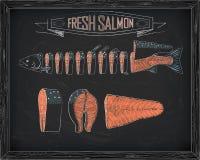 Cutting scheme fresh salmon Stock Photos