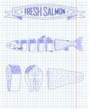 Cutting scheme fresh salmon Royalty Free Stock Photography