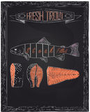 Cutting scheme fresh trout Royalty Free Stock Photos