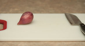 Cutting the Shallot Royalty Free Stock Images