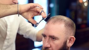 Cutting short hair with scissors and comb. Male hairstyle. Cropped view of male barber and man brunette bearded client. Cutting short hair with scissors and comb stock footage