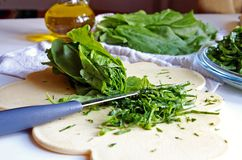 Cutting sorrel with knife on a kitchen board Stock Images