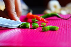 Cutting spicy Indian organic green chili royalty free stock photography