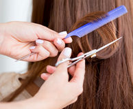 Cutting split ends of the hair Royalty Free Stock Image
