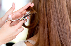 Cutting split ends Stock Photo