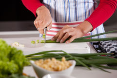 Cutting the spring onions. Woman hand cutting spring onions Royalty Free Stock Photos