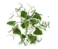 Cutting into strips of kaffir lime leaf Royalty Free Stock Images